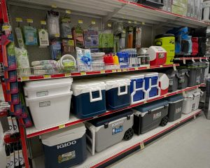 coolers and picnic supplies
